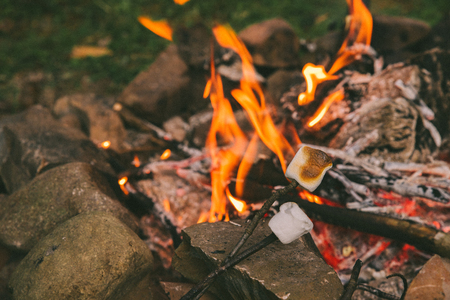 marshmallows at sticks. camping fire on background. camping Stock Photo