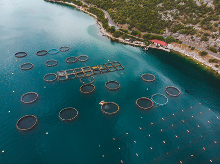 aerial view of fish farm in sea water. summer time. sea food