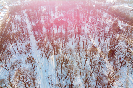 drone view of city park on sunset in winter day