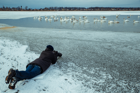 man take picture of swans on winter lake on professional camera