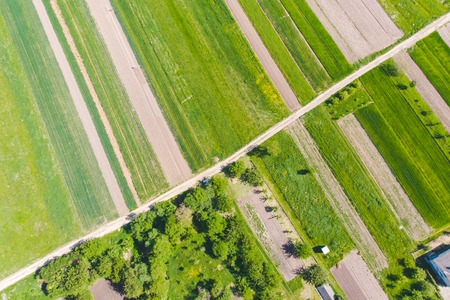 aerial view of farming fields. agronomy concept Imagens