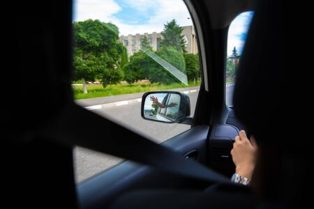 car travel concept view of hand in rear mirror summer time