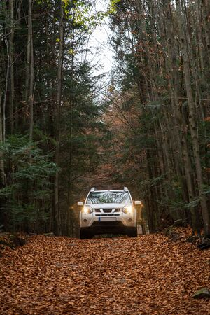 white suv car at trail road in autumn forest copy space lifestyle Foto de archivo - 130174136