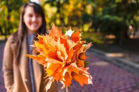 bouquet of yellow maple leaves close up in woman hand autumn is coming