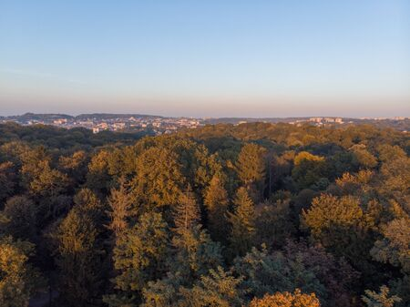 aerial view of autumn city park on sunset copy space