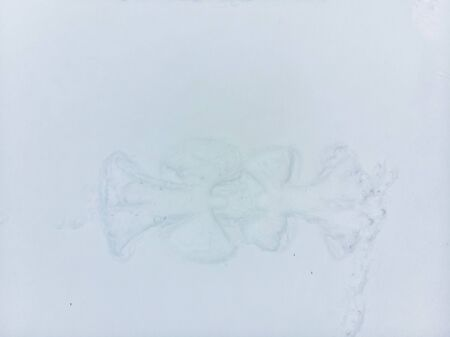 view of snow angel shape on snowed ground winter time copy space