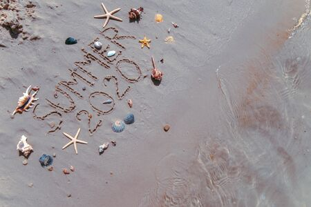 summer 2020 text on sand beach shells and starfish around. overhead