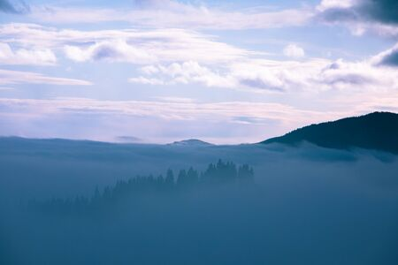 landscape of morning mountains sunrise above fogy forrest carpathians