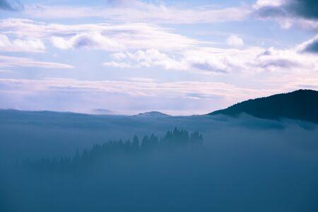 landscape of morning mountains sunrise above fogy forrest carpathians 免版税图像 - 139601845