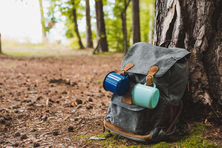 hiking backpack near tree in forest hiking concept Banque d'images - 151547136