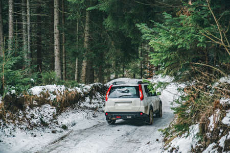 suv car with chain on wheels in snowed forest. off road journey