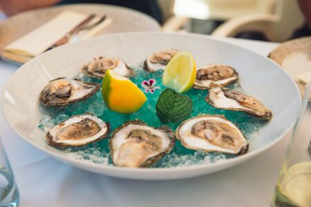 oysters on plate with lime and ice in restaurant Foto de archivo
