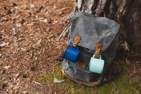 hiking backpack near tree in forest hiking concept Banque d'images