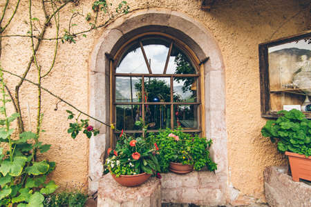 outdoors view of old window with plant decoration exterior Stockfoto