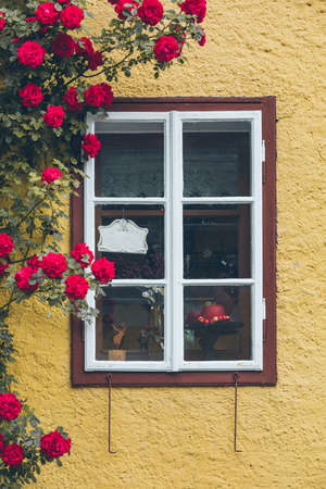 old window in house with yellow walls climbing red roses decoration copy space
