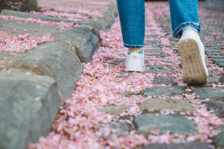 body parts close up. woman walking in white sneakers by fallen off pink sakura flowers