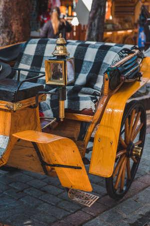 horse coach, close up at tourism city street