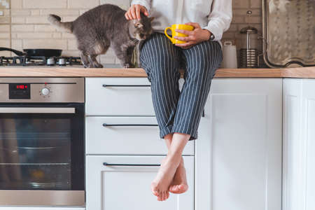 woman sitting on kitchen table with cat drinking tea from yellow mug Banque d'images