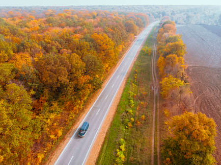 aerial view of autumn highway in forest copy space