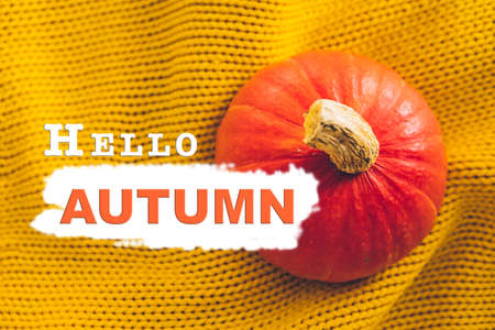 hello autumn text orange pumpkin on yellow cloth texture. greeting card