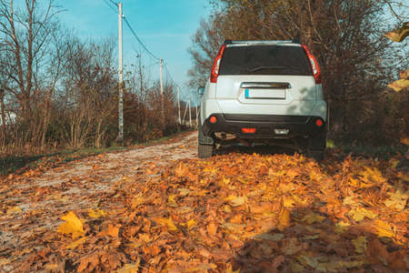 white suv car at county road side at autumn season copy space Reklamní fotografie