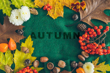 autumn text on green cloth texture autumn leaves around. greeting card