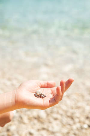 woman hand close up holding rocks. sea beach on background. copy space Reklamní fotografie