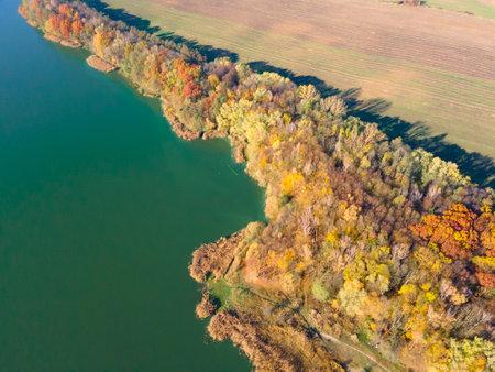 overhead top view of autumn beach lake with green water Standard-Bild