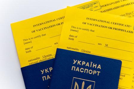 ukraine passport of vaccination Standard-Bild
