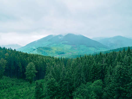 landscape scenic panoramic view of carpathian mountains cloudy overcast weather Standard-Bild