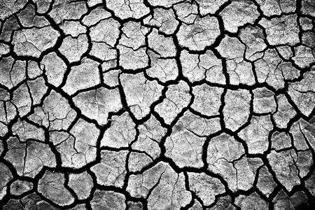 Impressive cracked earth Stock Photo