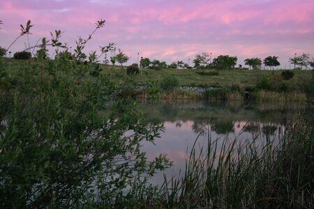 pond sky water