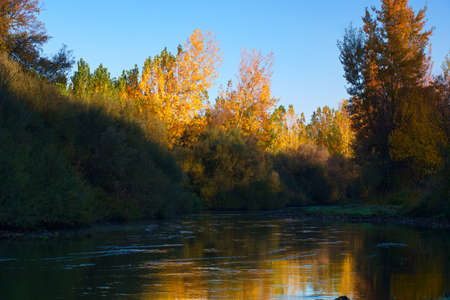 landscape river water trees leaves autumn