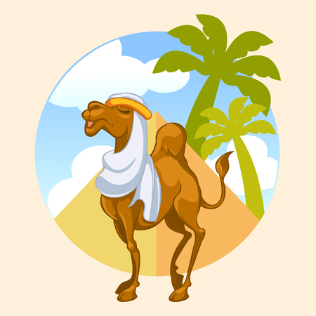 Camel With Pyramid Background