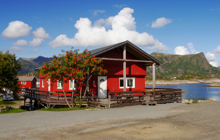 rorbu: Typical red rorbu fishing hut in town of Kabelvag on Lofoten islands