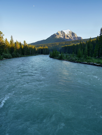 rockies: Bow River in the Canadian Rockies