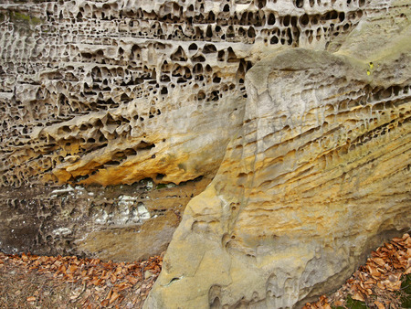 geologists: Structure of sandstone cliffs-detail Stock Photo