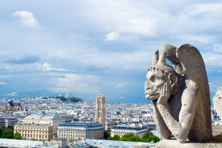 notre dame: Portrait of a gargoyle, his eyes from the tower of Notre Dame in Paris from a height  In the background is seen the hill on which is Basilica of the Sacred Heart of Jesus of Paris  Stock Photo