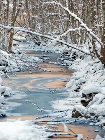 Bild von kalten und schneereichen Winter in Österreich Schöne Berg-und Naturerlebnisse in Hallstatt in der Nähe Obertraun Stadt, gegenüber dem Hallstätter See am nebligen wather Am Weihnachtsabend Standard-Bild - 15117709