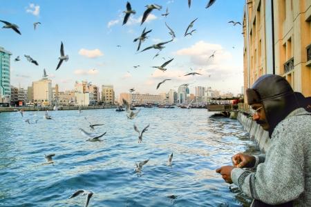 Fisherman Angeln in Dubai, VAE, am Dezember. Es gibt viele Vögel um Katechu ein Fisch Standard-Bild - 15117368