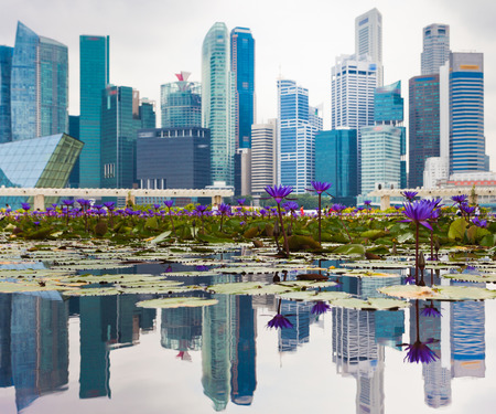 Business office and hotel in Singapore photo