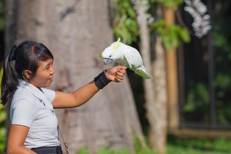 animales del zoologico: Discusi�n de la mujer joven con el loro en el zoo