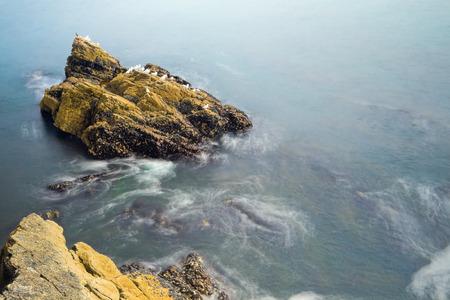 bretagne: Long exposure image of rock island with a few white birds of gull in ocean, Bretagne, France.