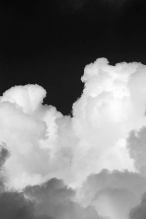 white light: Black and white background image of clouds in the sky illuminated by sunset light