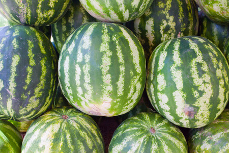 imposed: Image of a large number of watermelons imposed in the form of a pyramid on the market.