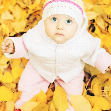 child looking up: Portrait of cute baby outdoor at autumn park with yellow leaves background. Child looking up at camera