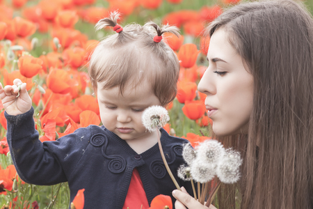 hapy: Children - flowers of life. Mother givs funny child a flower of dandelion. Outdoor, poppy field. Baby girl. Spring. Childrens Day celebrating on first June, 1 or 14 November Stock Photo
