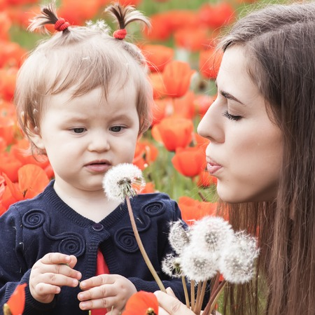 funy: Children - flowers of life. Mother givs funny child a flower of dandelion. Outdoor, poppy field. Baby girl. Spring. Childrens Day celebrating on first June, 1 or 14 November Stock Photo