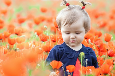 hapy: Children - flowers of life. Funny child holding a flower at outdoor at poppy field. Baby girl. Spring. Childrens Day celebrating on first June, 1 or 14 November Stock Photo