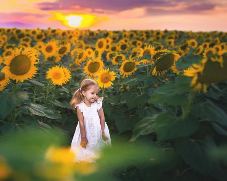 New Era Concept With Happy Kids, People. At Sunflower Field Zdjęcie Seryjne